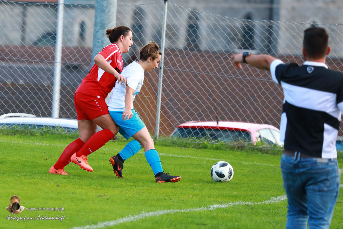 Damen -SV Wolfern 2-2 (223 von 479)