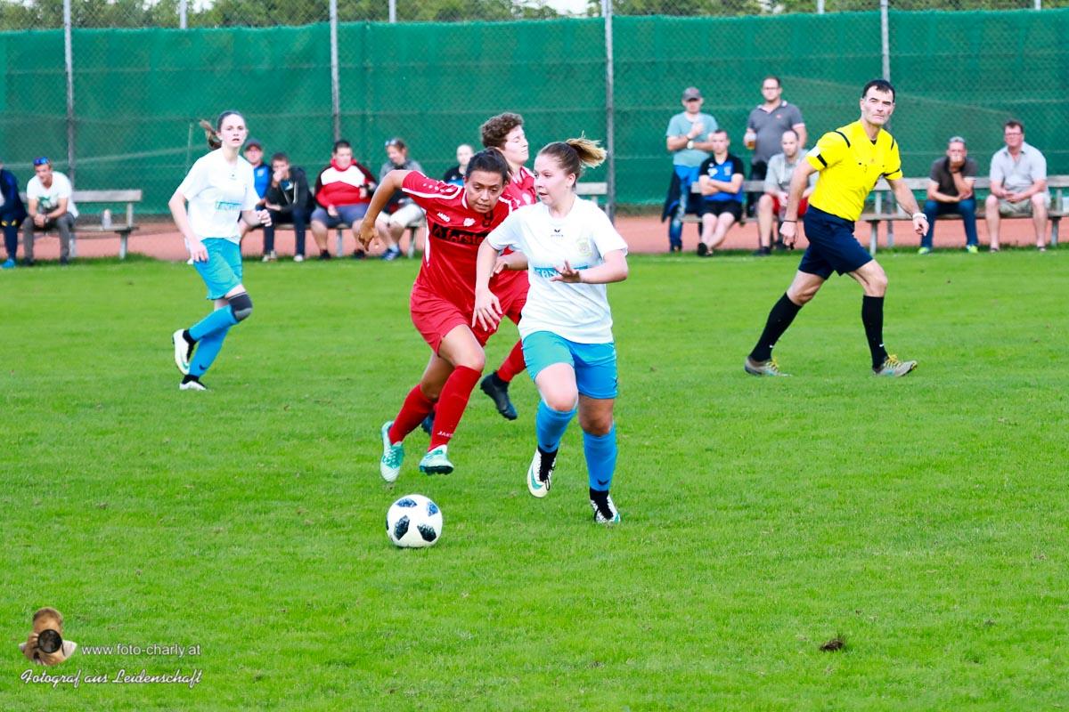 Damen -SV Wolfern 2-2 (227 von 479)