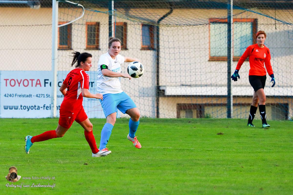 Damen -SV Wolfern 2-2 (302 von 479)