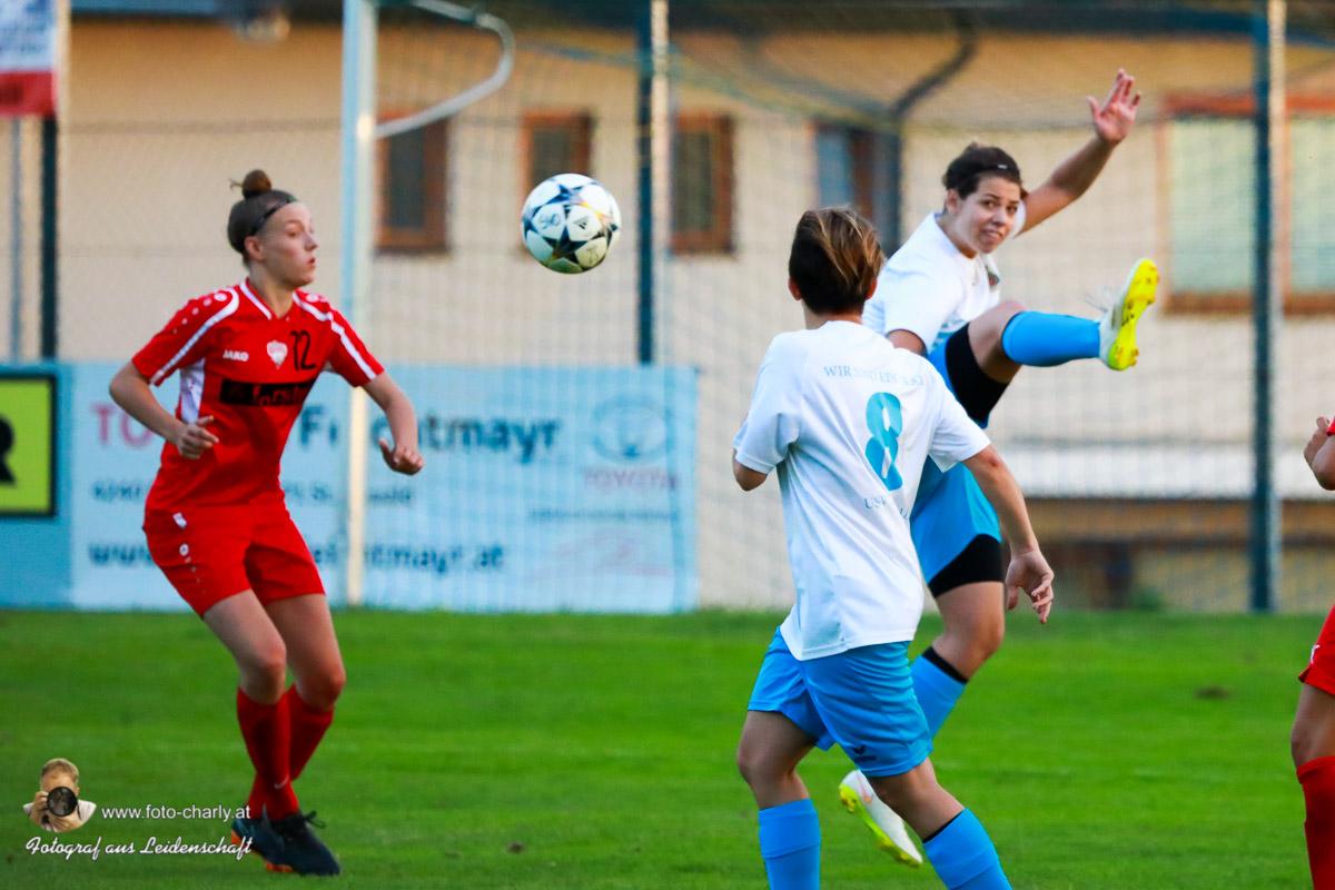 Damen -SV Wolfern 2-2 (372 von 479)