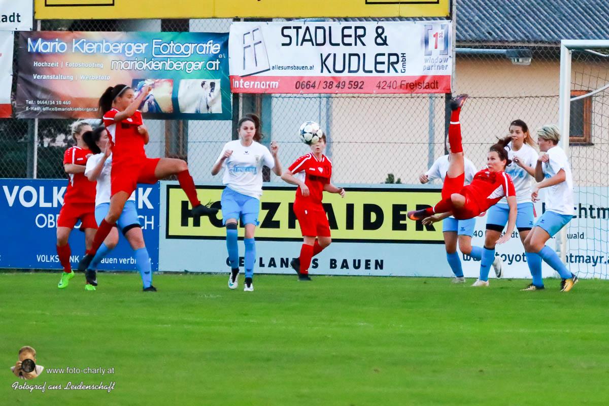 Damen -SV Wolfern 2-2 (428 von 479)