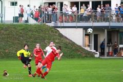 Damen -SV Wolfern 2-2 (201 von 479)