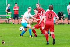 Damen -SV Wolfern 2-2 (225 von 479)
