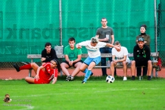 Damen -SV Wolfern 2-2 (319 von 479)