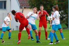 Damen -SV Wolfern 2-2 (334 von 479)