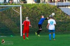 Damen -SV Wolfern 2-2 (347 von 479)