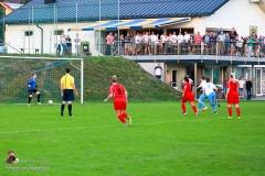 Damen -SV Wolfern 2-2 (368 von 479)