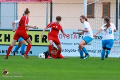 Damen -SV Wolfern 2-2 (393 von 479)