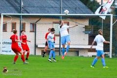 Damen -SV Wolfern 2-2 (424 von 479)
