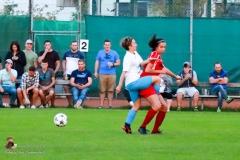 Damen -SV Wolfern 2-2 (467 von 479)