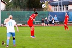 Damen -SV Wolfern 2-2 (477 von 479)