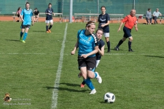 Damen SVO-Ottensheim 5-1 (150 von 563)