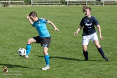 Damen SVO-Ottensheim 5-1 (224 von 563)