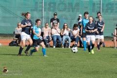 Damen SVO-Ottensheim 5-1 (296 von 563)