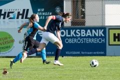Damen SVO-Ottensheim 5-1 (340 von 563)