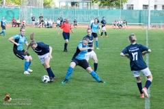 Damen SVO-Ottensheim 5-1 (42 von 563)