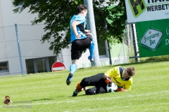 Damen SVO-Ottensheim 5-1 (48 von 563)