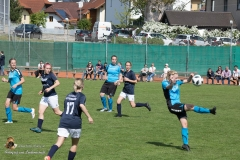 Damen SVO-Ottensheim 5-1 (65 von 563)