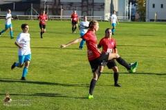 SVO Damen-Schweinbach 5-1 (11 von 287)