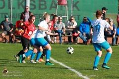 SVO Damen-Schweinbach 5-1 (30 von 287)