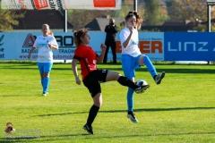 SVO Damen-Schweinbach 5-1 (9 von 287)